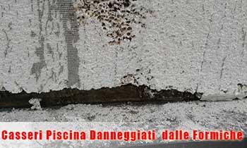difetti Piscine Casseri.